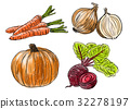 Types of fresh vegetables 32278197