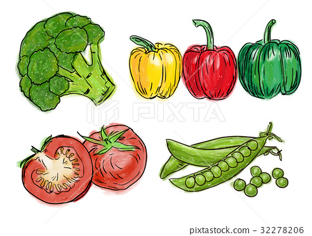 Types of fresh vegetables 32278206