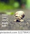 soft snail slowness 32279643