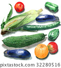 夏季蔬菜 32280516