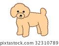 玩具貴賓犬 32310789