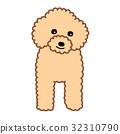 玩具貴賓犬 32310790