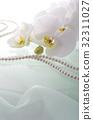 蝴蝶兰 花朵 花卉 32311027