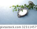鏡子 常春藤 室內盆栽 32311457