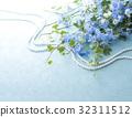 飛燕草 花朵 花 32311512