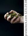 동전, 손, 엽전 32313538