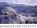 Trees in Winter in the Black Forest, Germany 32315371