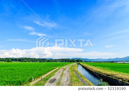 여름의 시골 풍경 푸른 하늘 32319190