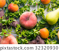 fruit, summer, concept 32320930