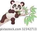 Baby Panda 32342713