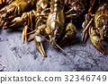 Fresh crayfish close-up 32346749