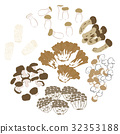 mushroom, mushrooms, assortment 32353188