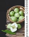 Fresh Green Mountain Apples 32356668
