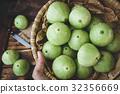 Fresh Green Mountain Apples 32356669