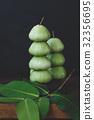 Fresh Green Mountain Apples 32356695