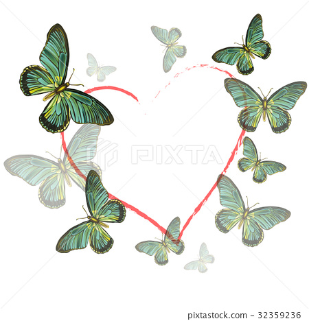 heart of butterflies on white background 32359236