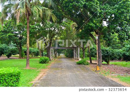 Green campus 32373654