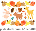 autumn, autumnal, animal 32376480