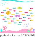 熱帶魚 小組 團隊 32377668