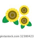 summer, bloom, blossom 32380423