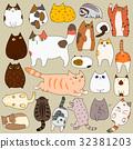猫 猫咪 小猫 32381203