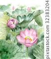 핑크 고대 연꽃 32383204