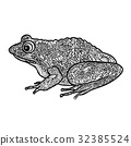 青蛙 矢量 矢量图 32385524