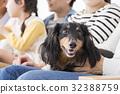 3代家庭和狗 32388759