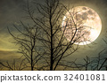 Night landscape of sky with super moon behind tree 32401081