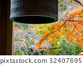 楓樹 紅楓 楓葉 32407695