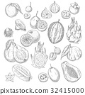 Vector exotic or tropical fruits sketch icons set 32415000