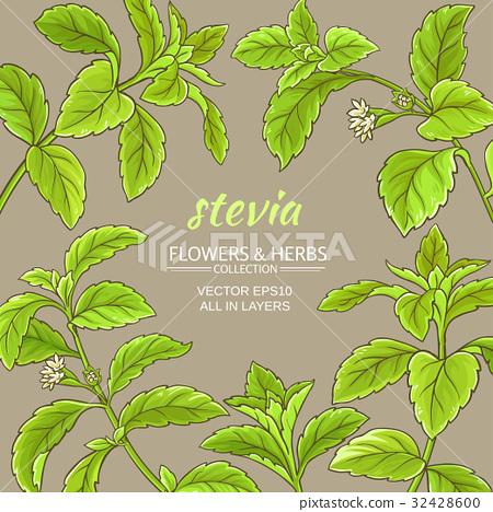 stevia vector frame 32428600