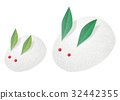 mountain hare, bunny, rabbit 32442355