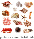 set, sea, shell 32449066