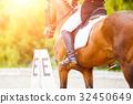 dressage, horse, competition 32450649