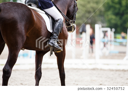 Bay horse with rider at dressage competitions 32450752