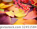 Colorful background of autumn leaves 32451584