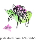 Vector drawn clover banner with hand drawn flowers 32459665