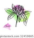 clover, vector, flower 32459665