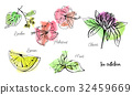 Vertical vector set of hand drawn tea collection. 32459669
