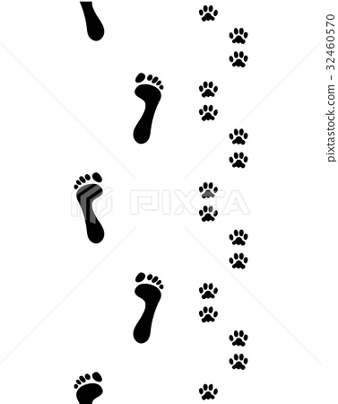 feet and dog paws 32460570