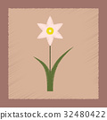 flat shading style Illustrations plant Narcissus 32480422