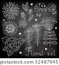 isolated, floral, vector 32487645