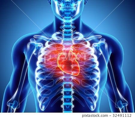 3D illustration of Heart, medical concept. 32491112