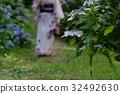 绣球花 浴衣 花朵 32492630