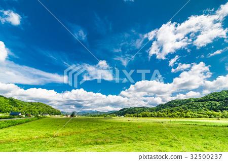 北海道大自然農場 32500237