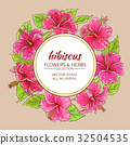 hibiscus vector frame 32504535