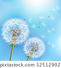 Blue background with two flowers dandelions 32512902