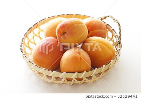 杏子9 32529441