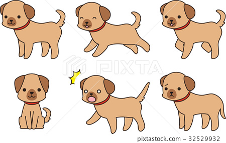 갈색 강아지 포즈 집 32529932